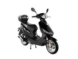Sale-TaoTao CY50-T3 Scooter Fall SALE $1049!!!!!!!!!!!! Edmonton Edmonton Area image 2