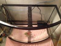 50 Gallon bow-front tank with internal filter