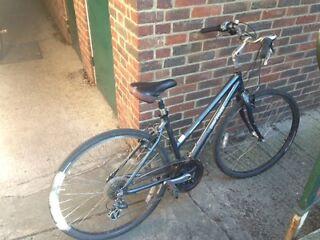Women Gary Fisher city bike