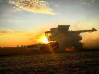 Experienced agricultural machine operator