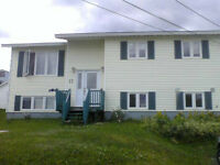 FOR RENT LARGE SPACIOUS CLEAN 1 BEDROOM APT.