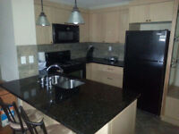 INCREDIBLE DEAL!! Furnished Condo with Utilities (Price Reduced)