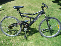 Raleigh 26 inch bike for sale