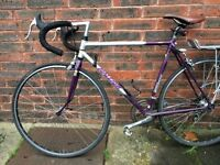 Women's vintage Raleigh bike, excellent condition - all offers considered