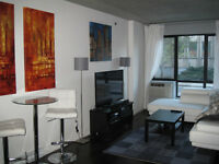***CONDO IN GRIFFINTOWN***ROOFTOP TERRASSE***