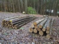 Cedar Logs, Posts, Rails and Pickets For Sale