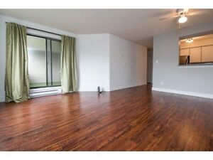 RARELY AVAILABLE CONDO - 2BED + DEN