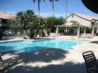 Fully Furnished One Bedroom Condo – Chandler, Az