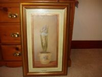 TWO VERY LARGE GOLD FRAMED PRINTS