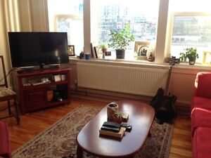 Summer Sublet- Sunny South End Apartment