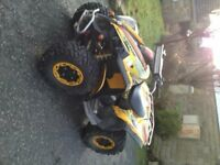 can-am renegade 800cc professional quad bike