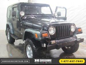1999 Jeep TJ SE 2 TOITS 4X4