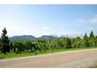 Crowsnest Pass - Beautiful South Facing Lot