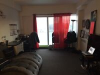 1 bedroom Apartment McGill Ghetto - Lease Transfer June 1st