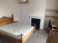 double room in professional houseshare