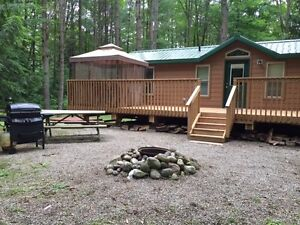 New Pine Cabin in Muskoka, Kahshe River, Pool, Park, Forest+