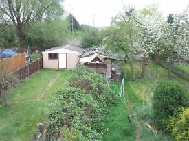Double Room plus £13-Bills,House Overlooking Trees N Fields,Central Line 8 Min Walk Z4, Friendly peo