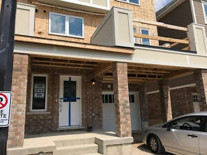 514 Goldenrod- Brand New Luxury Townhome