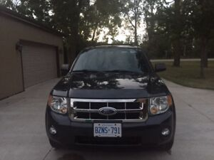Ford Escape XLT SUV - 4WD MINT, LOW KM !!