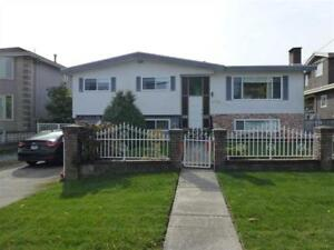 Whole house for rent - North  Burnaby