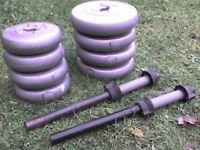 55 lb 25 kg Big Grey Dumbbell & Barbell Weights - Heathrow