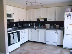 Students-Oversized Master and 2 large bedrooms available Sept 1