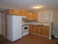 2 bedroom walkout basement in Coventry for rent
