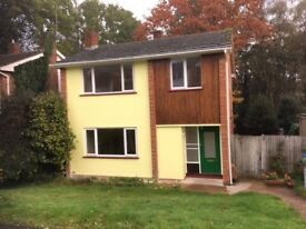 To let - recently renovated detached house in Southampton. First time let.