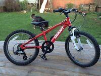 Giant XTC Junior Childs Mountain Bike 20 inch wheel