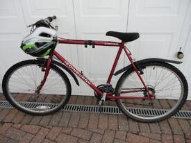 Inexpensive starter Mountain Bike including unused helmet