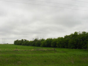 Unity, SK. Commercial and Industrial land MLS # 594948