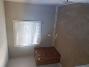 Room for rent in pet friendly southside location