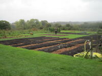 Garden Plots for Rent! We will assist!