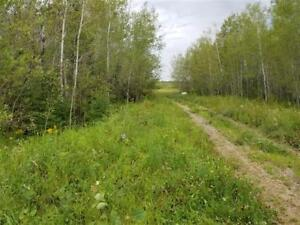PERFECT HUNTING LAND IN LAC DU BONNET