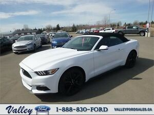 PERFORMANCE PACKAGE! 2016 Ford Mustang EcoBoost CONVERTIBLE