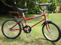 Wanted Raleigh Grifter any model