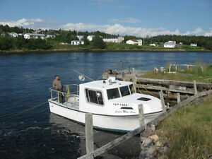 pleasure boat workboat St. John's Newfoundland image 4