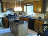 Kitchen Cabinets, Counters, Sink & faucet