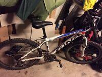 """Pinarello Child's Bike - 24"""" wheels, 15"""" frame, Aluminium frame"""