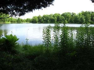 Vacation / retirement on small lake West Island Greater Montréal image 4