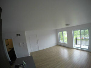 Beautiful Spacious 2 Bedroom For Rent, 16641 Pierrefonds West Island Greater Montréal image 9