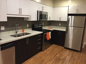 Beautifully renovated suite close to Downtown Burlington!