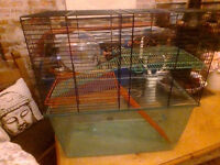 hamster/gerbil/mouse cage