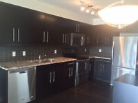 Beautiful New 2 Bedroom Condo - Will Pay Half of first Rent !