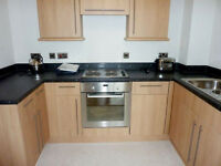Stunning 1 bed flat in Royal Victoria ideal for couples/companies available now!
