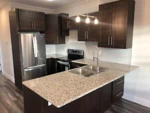 Brand New Beautiful 2 Bedroom - Heat/water/HW Included