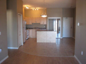 Beautiful Leduc Condo
