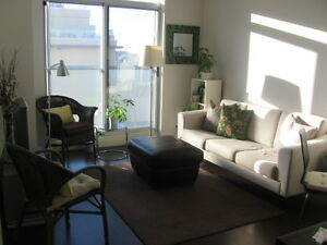 $1650 / Sunny 1BR Condo Downtown (King & Shaw)