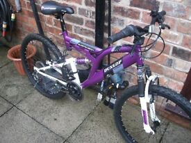 childrens mountain bike