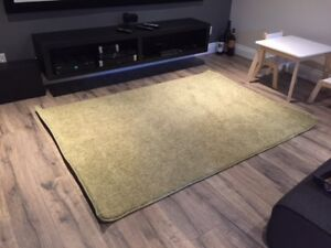 Tapis shag impeccable